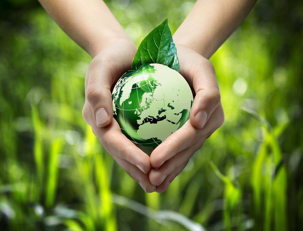 Vieth_Warum-nachhaltig